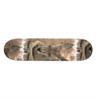 Monopatín de reclinación del canguro skateboard