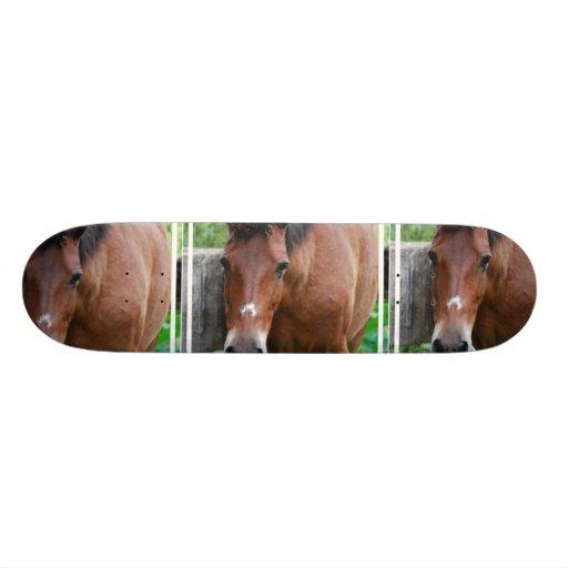 Monopatín del caballo de Paso Fino Patines Personalizados