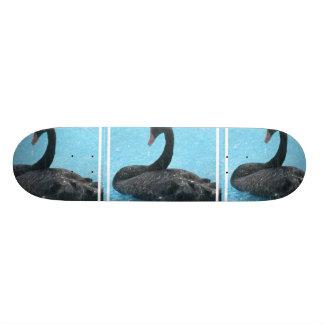 Monopatín del cisne negro