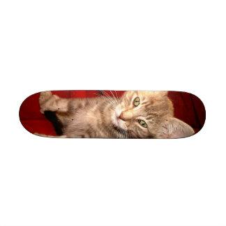 "Monopatín del gatito de Hemingway Patineta 8 1/8"""