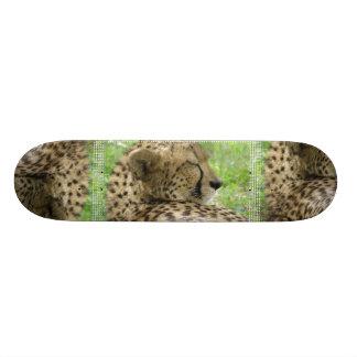 "Monopatín del guepardo patineta 7 3/8"""