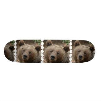 Monopatín del oso de Brown Tabla De Patinar