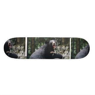Monopatín del oso el gruñir