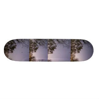 "Monopatín del paisaje de la puesta del sol de Kent Patineta 8 1/8"""