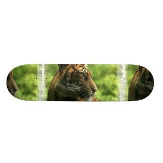 Monopatín del perfil del tigre