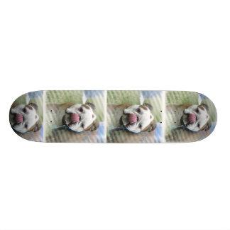 Monopatín del perro de Bull Skate Board