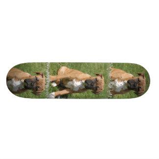 Monopatín del perro del boxeador monopatines personalizados
