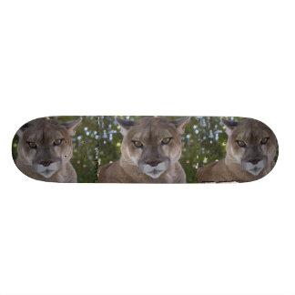 Monopatín del puma skateboards