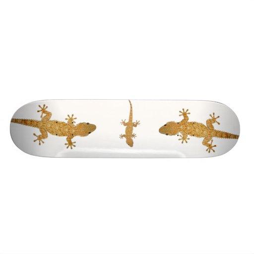Monopatín del reptil del lagarto del Gecko