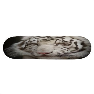 Monopatín del tigre siberiano