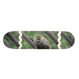 Monopatín dulce del mono de ardilla patín personalizado