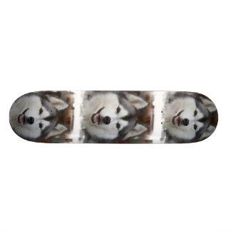 Monopatín fornido del perro tabla de patinar