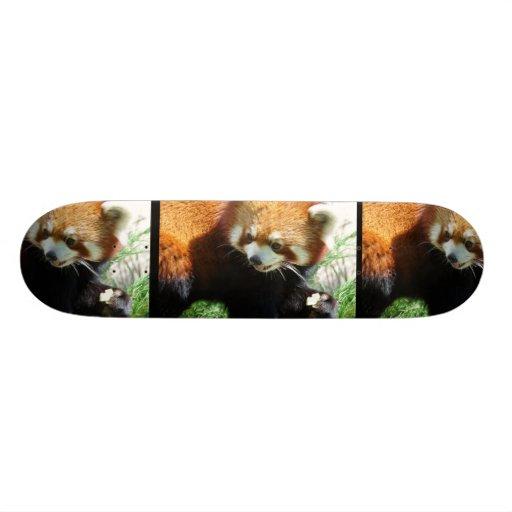 Monopatín lindo del oso de panda roja tabla de skate
