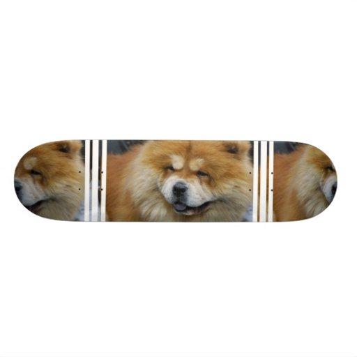 Monopatín lindo del perro chino de perro chino