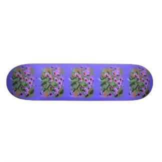monopatín púrpura de los asteres patines