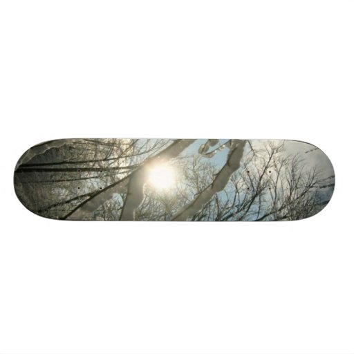 Monopatín soleado del árbol del invierno