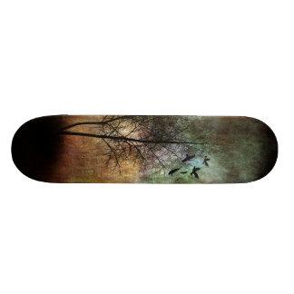 Monopatín solitario del árbol