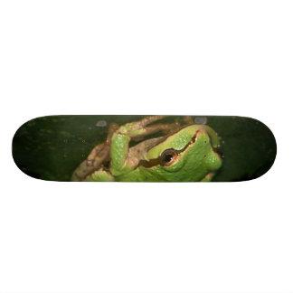 Monopatín verde de la rana arbórea skate boards