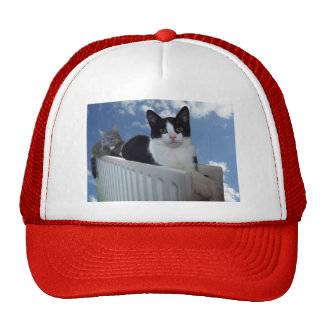 Monorail Cat - Radiator Edition Baseball Cap Trucker Hat