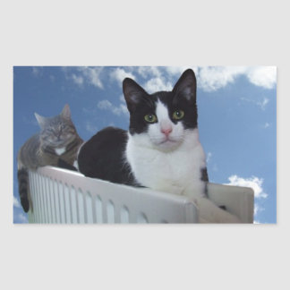 Monorail Cats On A Radiator - Sticker