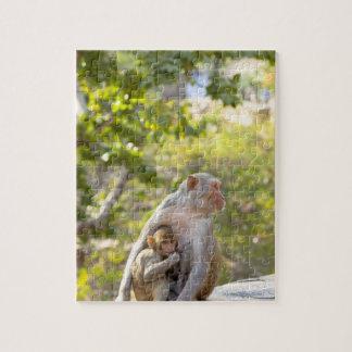 Monos de Macaque del macaco de la India de la madr Puzzles
