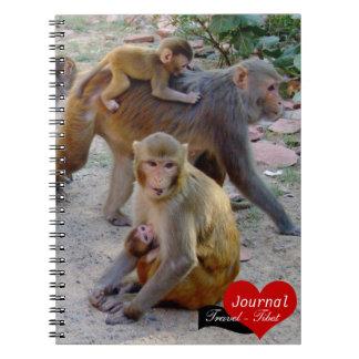 Monos de Macaque, monos jovenes, Asia (cuaderno) Spiral Notebooks