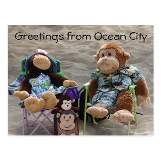 Monos del vago de la playa tarjeta postal