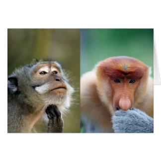 Monos divertidos tarjeta de felicitación