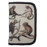 Monos (litho del color) planificador