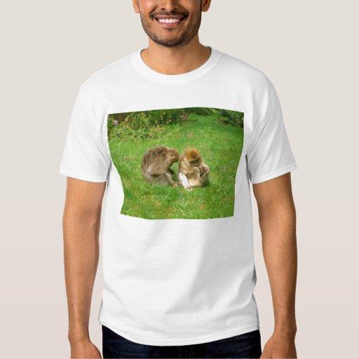 Monos que preparan la camiseta camisas