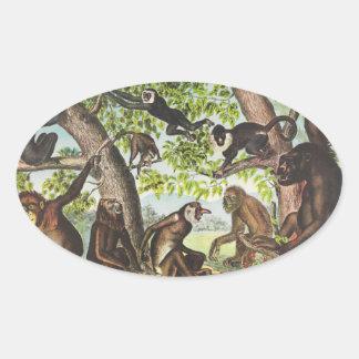 Monos y primates pegatina ovalada