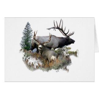 Monster bull trophy buck greeting card