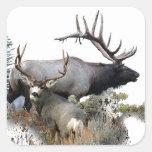 Monster bull trophy buck square sticker