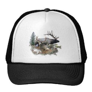 Monster bull trophy buck trucker hat
