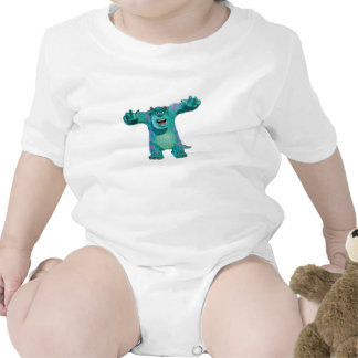 Monster Inc. Sulley scary Disney Tees