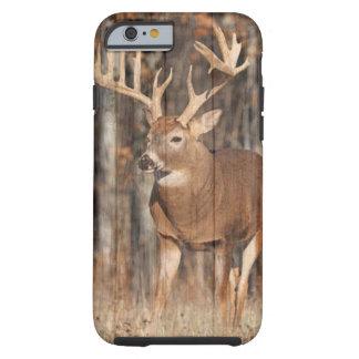 Monster Whitetail Deer, Buck Tough iPhone 6 Case