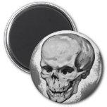 Monstruo 'Skull del vintage del kitsch Imán De Nevera