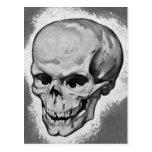 Monstruo 'Skull del vintage del kitsch Postales