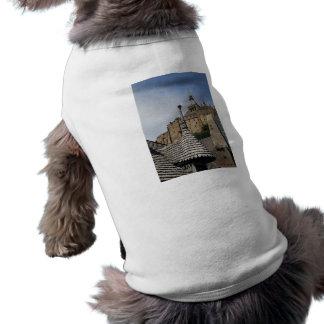 Mont Saint-Michel, France Pet Clothes