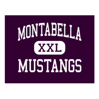 Montabella - Mustangs - High - Blanchard Michigan Postcard