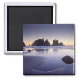 Montage of man carrying kayak, ShiShi Beach, 2 Inch Square Magnet