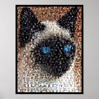 montaje del gato siamés poster