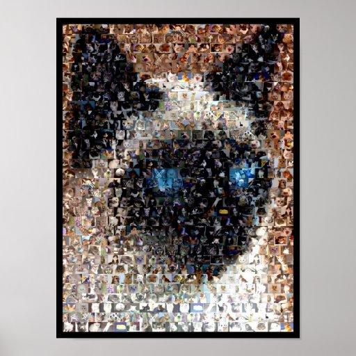montaje del gato siamés póster