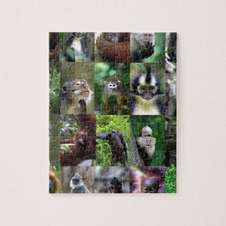 Montaje del primate del mono puzzle con fotos