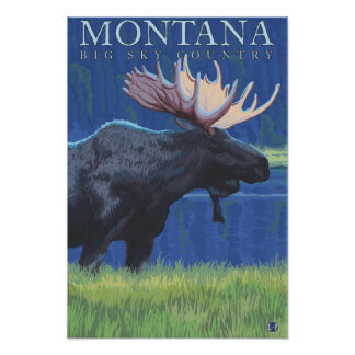 Montana -- Big Sky CountryMoose in Moonlight Posters