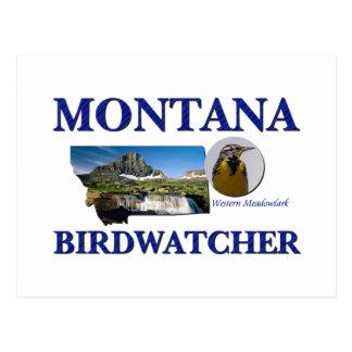 Montana Birdwatcher Postcard