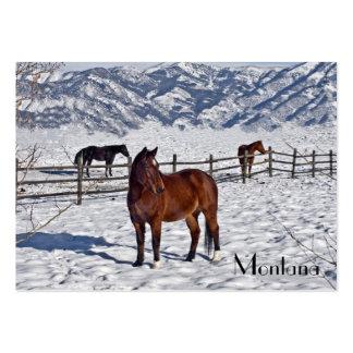 Montana Business Card