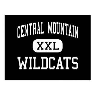 Montaña central - gatos monteses - alta - molino postales