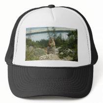 Montana Chipmunk Trucker Hat