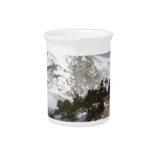 Montaña congelada jarrones